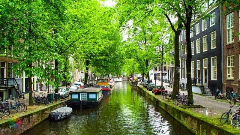 amsterdam'da yürüyüş