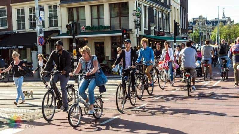Amsterdam'da da yapılacak şeyler bisiklet