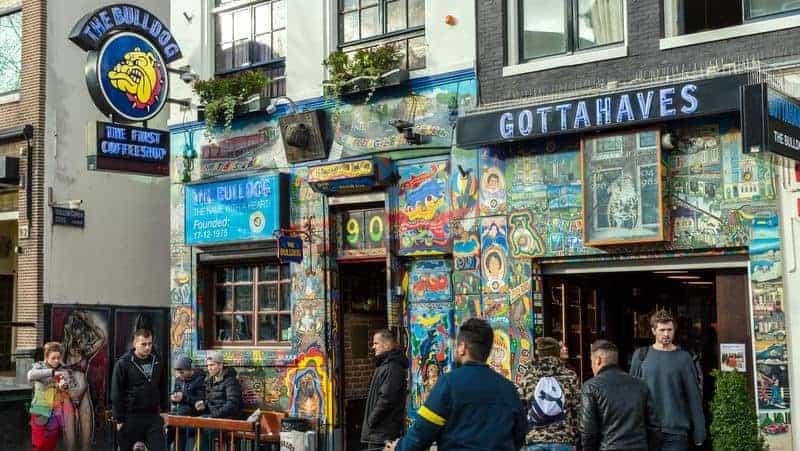 amsterdam gezi rehberi coffeeshops